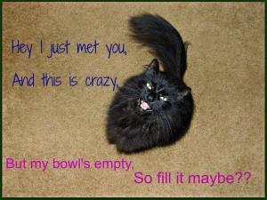 Fill My Bowl Stranger