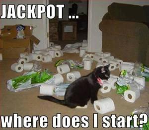 Jackpot!  Where Do I Start