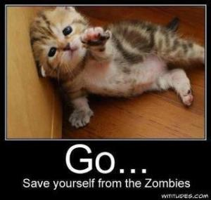 Save Yourself From the Zombies