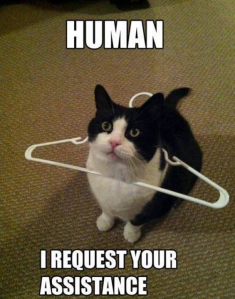 Human, I Request Your Assistance