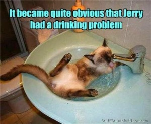 0980f-it2bbecame2bquite2bobvious2bthat2bjerry2bhad2ba2bdrinking2bproblem