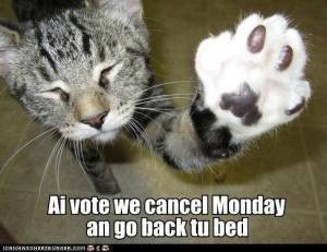 Ai Vote We Cancel Monday