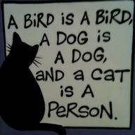 A Cat is a Person