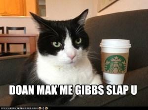 Don't Make Me Gibbs Slap You