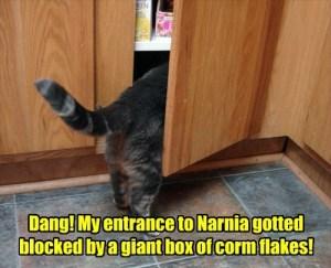 Entrance to Narnia
