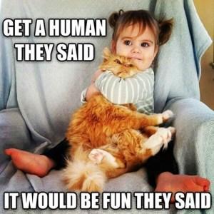 Get a Human They Said
