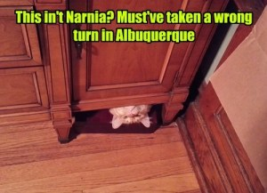 This Isn't Narnia