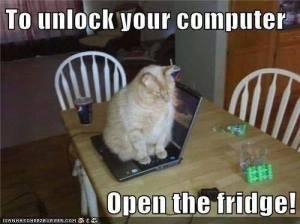 To Unlock Your Computer, Open the Fridge
