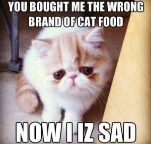 You Bought Me the Wrong Kind of Cat Food