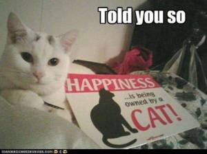 Happiness is Being Owned by a Cat