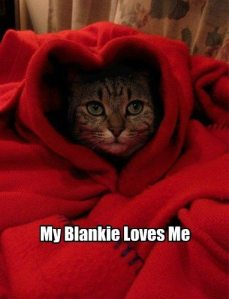 My Blankie Loves Me