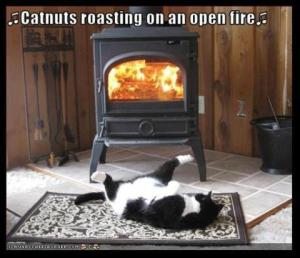 Catnuts Roasting on an Open Fire