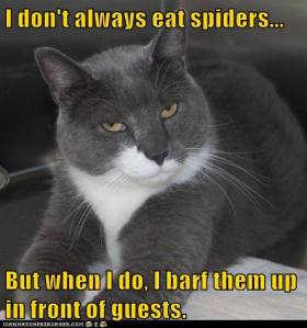 I Don't Always Eat Spiders