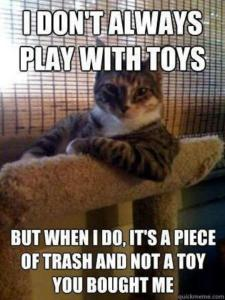 I Don't Always Play With Toys
