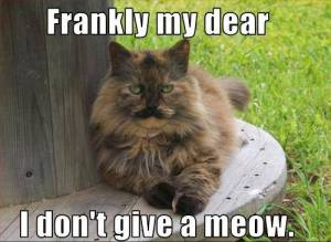 Frankly My Dear I Don't Give a Meow