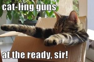 Cat-ling Guns