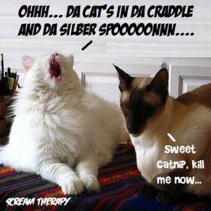 Da Kats in Da Cradle