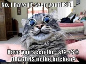 I Haven't Seen Your LSD