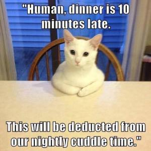 Dinner is 10 Minutes Late