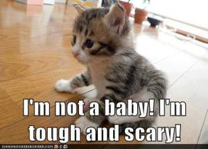 I'm Tough and Scary