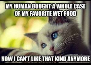 Favorite Wet Food