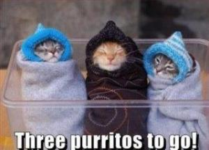 Three Purritos