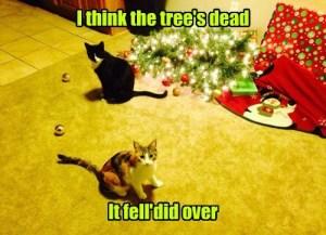 The Tree is Dead