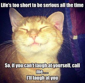 I'll Laugh At You