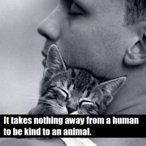 Kind to an Animal