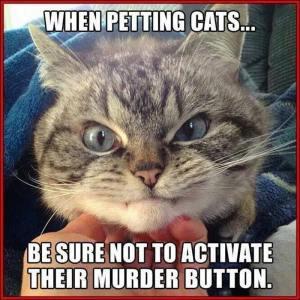 Murder Button