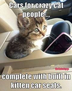 Kitten Car Seats