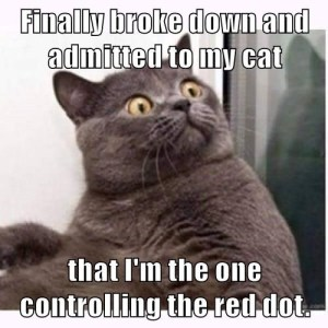Control the Red Dot