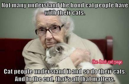 Cat Bond