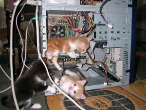 Highly Trained Technicians