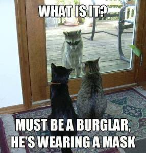 Must Be a Burgler