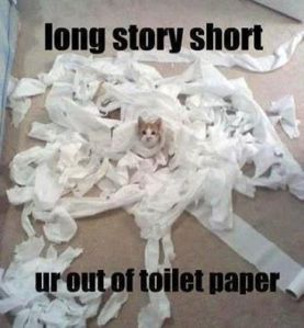 Out of Toilet Paper