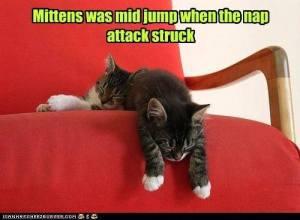 mid-jump