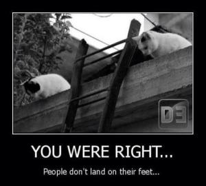 people-dont-land-on-their-feet