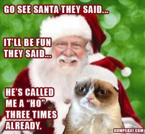 go-see-santa-they-said