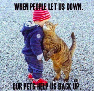 pets-help-us-back-up